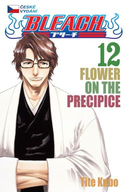 obrázek k novince Bleach 12: Flower on the Precipice